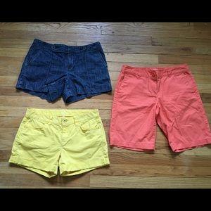 Beautiful Colorful Ann Taylor Loft Shorts Bundle